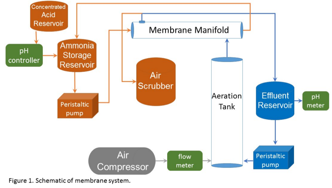 Figure 1. Schematic of membrane system
